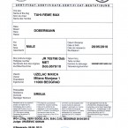 IPO1_Certificate